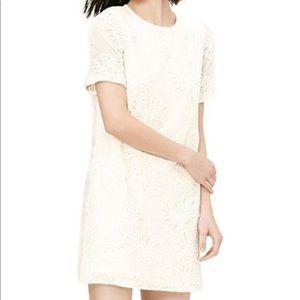 Anne Taylor Loft White 🌴 Palm Shift Mini Dress